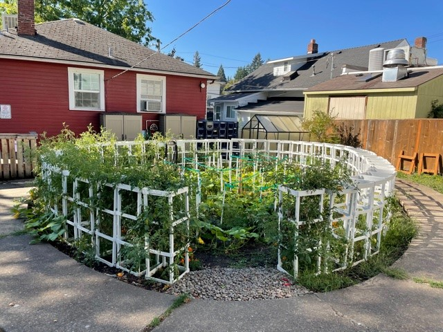 Food Pantry Garden Wraps Up for Winter